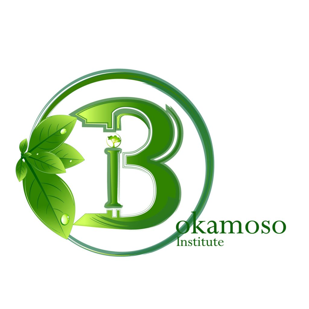 Bokamoso_logo_1